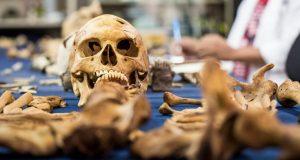 Antropoloji Bölümü Taban Puanları, Başarı Sıralaması ve Kontenjanları