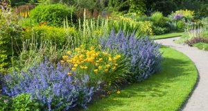 Bahçe Bitkileri Bölümü Taban Puanları, Başarı Sıralaması ve Kontenjanları