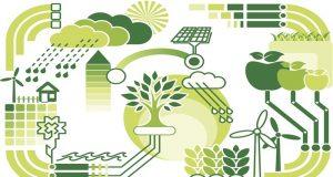 Enerji Yönetimi Bölümü Taban Puanları, Başarı Sıralaması ve Kontenjanları